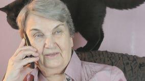 Ηλικιωμένη συνεδρίαση γυναικών δίπλα στη μαύρη γάτα κλείστε επάνω απόθεμα βίντεο