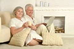 Ηλικιωμένοι άνθρωποι με το τσάι και το lap-top στοκ φωτογραφίες με δικαίωμα ελεύθερης χρήσης