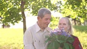 Ηλικιωμένοι παππούδες και γιαγιάδες ζευγών που περπατούν στο πάρκο απόθεμα βίντεο