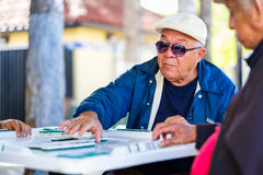 Ηλικιωμένος φορέας ντόμινο Στοκ εικόνα με δικαίωμα ελεύθερης χρήσης