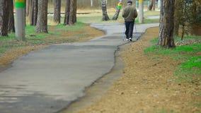ηλικιωμένο ασκώντας πάρκ&omicron απόθεμα βίντεο