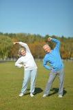 Ηλικιωμένο ζεύγος στο πάρκο στοκ εικόνες με δικαίωμα ελεύθερης χρήσης