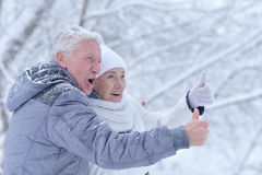 Ηλικιωμένο ζεύγος το χειμώνα στοκ εικόνα με δικαίωμα ελεύθερης χρήσης