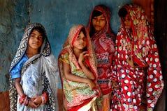 Η ινδική Sari στοκ φωτογραφίες με δικαίωμα ελεύθερης χρήσης