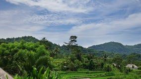 Η Ινδονησία, Μπαλί, σύννεφα κινείται πέρα από τα πεζούλια βουνών και ρυζιού, χρονικό σφάλμα, απόθεμα βίντεο