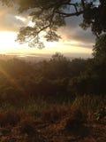 Ηλιοβασίλεμα δέντρων Στοκ εικόνες με δικαίωμα ελεύθερης χρήσης