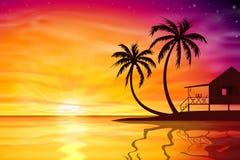 Ηλιοβασίλεμα, ανατολή με το καρύδι παραλιών απεικόνιση αποθεμάτων