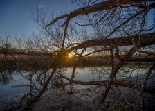 Ηλιοβασίλεμα από την όχθη ποταμού Στοκ φωτογραφίες με δικαίωμα ελεύθερης χρήσης