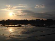 Ηλιοβασίλεμα βραδιού στο cornfield το Δεκέμβριο του 2016 τομέων ορυζώνα Ταϊλάνδη #006 Στοκ Εικόνα