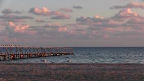 Ηλιοβασίλεμα βραδιού, το υπόλοιπο πουλιών στο κιγκλίδωμα της αποβάθρας απόθεμα βίντεο
