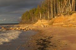 Ηλιοβασίλεμα εν πλω με τα ξύλα στοκ φωτογραφίες με δικαίωμα ελεύθερης χρήσης