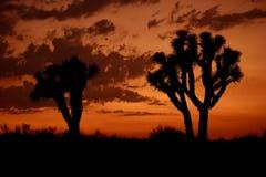 Ηλιοβασίλεμα ερήμων Μοχάβε στοκ φωτογραφίες με δικαίωμα ελεύθερης χρήσης