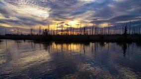 Ηλιοβασίλεμα ελών της Λουιζιάνας στοκ φωτογραφία