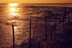 Ηλιοβασίλεμα θαλασσίως Στοκ εικόνες με δικαίωμα ελεύθερης χρήσης