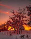 Ηλιοβασίλεμα λιβαδιών Στοκ φωτογραφία με δικαίωμα ελεύθερης χρήσης