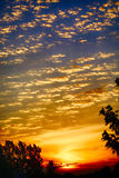 Ηλιοβασίλεμα Ιουνίου Στοκ Φωτογραφία