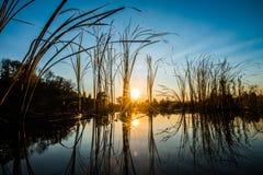 Ηλιοβασίλεμα και η λίμνη Στοκ εικόνα με δικαίωμα ελεύθερης χρήσης