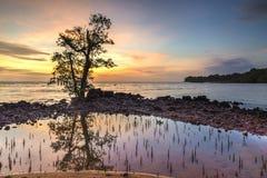 Ηλιοβασίλεμα και θάλασσα παραλιών η παραλία Στοκ Φωτογραφίες
