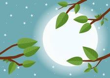 Ηλιοβασίλεμα κινούμενων σχεδίων Επίπεδη διανυσματική απεικόνιση, δέντρα, φύλλο, φεγγάρι και Στοκ Φωτογραφίες