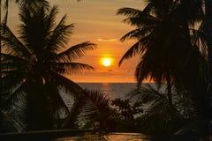 Ηλιοβασίλεμα με τη σκιαγραφία φοινίκων Στοκ φωτογραφία με δικαίωμα ελεύθερης χρήσης