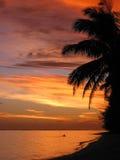 Ηλιοβασίλεμα νήσων Κουκ Στοκ φωτογραφία με δικαίωμα ελεύθερης χρήσης