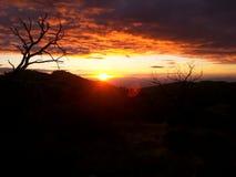 Ηλιοβασίλεμα πέρα από τη λεκάνη ιουνιπέρων Στοκ φωτογραφίες με δικαίωμα ελεύθερης χρήσης