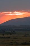 Ηλιοβασίλεμα πέρα από τη σαβάνα Κένυα Στοκ Εικόνα