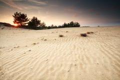Ηλιοβασίλεμα πέρα από τον αμμόλοφο άμμου με τις συστάσεις Στοκ φωτογραφία με δικαίωμα ελεύθερης χρήσης