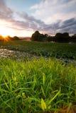 Ηλιοβασίλεμα πέρα από τον κολπίσκο Mudgeeraba, Gold Coast, Queensland, Αυστραλία Στοκ Φωτογραφίες