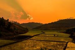 Ηλιοβασίλεμα πέρα από τους τομείς ρυζιού στη Μαδαγασκάρη Στοκ Φωτογραφία