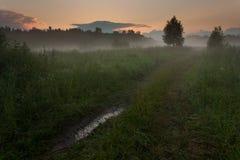Ηλιοβασίλεμα πέρα από το λιβάδι με την ομίχλη Στοκ Εικόνες