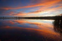 Ηλιοβασίλεμα πέρα από Penrith και τα μπλε βουνά Αυστραλία Στοκ φωτογραφία με δικαίωμα ελεύθερης χρήσης
