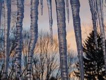 Ηλιοβασίλεμα παγακιών Στοκ εικόνα με δικαίωμα ελεύθερης χρήσης