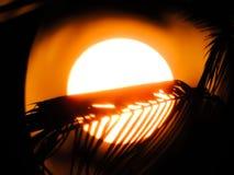 Ηλιοβασίλεμα πανσελήνων στοκ εικόνα με δικαίωμα ελεύθερης χρήσης