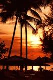 Ηλιοβασίλεμα παραλιών στη γραμμή ακτών, φοίνικας Στοκ φωτογραφίες με δικαίωμα ελεύθερης χρήσης