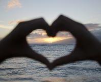 Ηλιοβασίλεμα που καλύπτεται με το χέρι Στοκ Φωτογραφίες