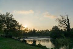 Ηλιοβασίλεμα σε ένα πάρκο πέρα από να φανεί μια λίμνη Στοκ Φωτογραφία