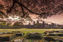 Ηλιοβασίλεμα σε Angkor Wat Στοκ Εικόνες