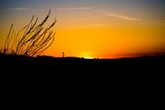 Ηλιοβασίλεμα σκιαγραφιών ουρανός-άποψης του Λος Άντζελες Στοκ Εικόνες