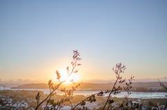 Ηλιοβασίλεμα σκιαγραφιών στοκ φωτογραφίες