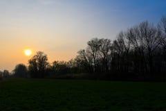 Ηλιοβασίλεμα στα δάση Στοκ φωτογραφία με δικαίωμα ελεύθερης χρήσης