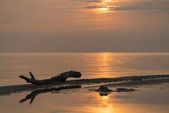 Ηλιοβασίλεμα στην ακτή στοκ φωτογραφία με δικαίωμα ελεύθερης χρήσης