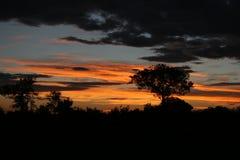Ηλιοβασίλεμα στην Αφρική Στοκ Φωτογραφίες