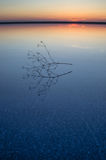 Ηλιοβασίλεμα στην αλατισμένη λίμνη Elton Στοκ Εικόνα