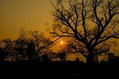 Ηλιοβασίλεμα στην Οζάκα Στοκ Εικόνα
