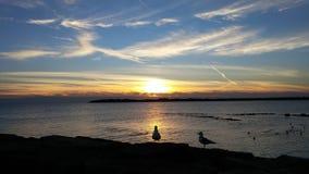 Ηλιοβασίλεμα στην παραλία κρυστάλλου στη λίμνη Erie Στοκ Φωτογραφία