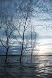 Ηλιοβασίλεμα στην πρώην-εξάγοντας λίμνη Στοκ φωτογραφίες με δικαίωμα ελεύθερης χρήσης