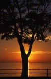 Ηλιοβασίλεμα στη λίμνη Σαιντ Λούις στοκ φωτογραφία με δικαίωμα ελεύθερης χρήσης