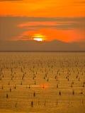 Ηλιοβασίλεμα στη λίμνη Songkhla Στοκ Φωτογραφία