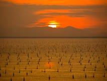 Ηλιοβασίλεμα στη λίμνη Songkhla Στοκ Εικόνες